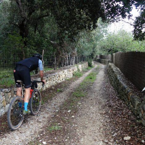 XPDTN3:  Mallorca