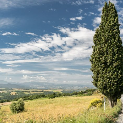 XPDTN3: TUSCANY WITH MAGNUS BACKSTEDT